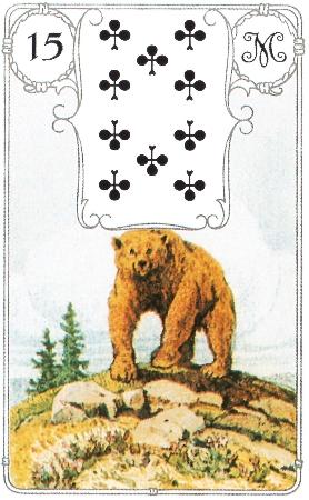 15-medved